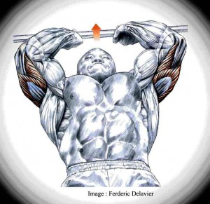 lying-triceps-extension-fin