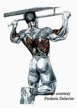 pull-ups-2-for-web