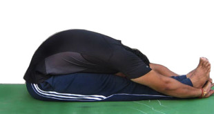 how to do pashchimottanasana in hindi