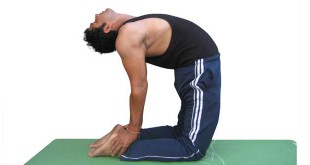 Right way to do ushtrasana in hindi