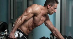 All about sustanon steroids in hindi