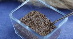 Flax seeds| अलसी उर्फ तीसी के लाभ और साइड इफेक्ट