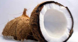 Role of coconut oil in bodybuilding hindi