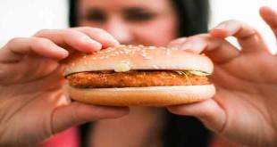 junk-food-harms-in-hind