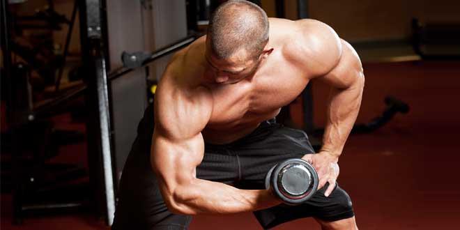 हर किसी को बाइसेप्स चाहिए क्योंकि वही तो दिखता है, 15 से 17 इंच का बाइसेप्स जिम जाने वाले शख्स की निशानी होता है।