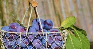 Best ways to remove pesticides from fruits and vegetables in hindi