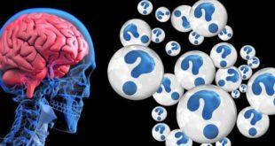 दिमाग को भी ट्रेनिंग, जड़ी बूटियों और अच्छी डाइट से तेज कर सकते हैं।