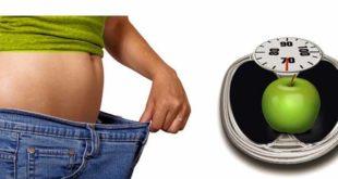 हम यहां मोटापा दूर करने से जुड़े हर तरीके और हर नुस्खे की बात करने वाले हैं।