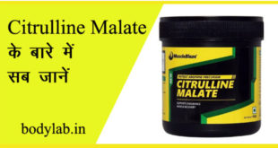 Citrulline Malate बॉडी बिल्डिंग में यूज होने वाला सप्लीमेंट है। इस लेख में हम इसके बॉडी बिल्डिंग में यूज, लाभ, लेने का तरीका और डोज के बारे में जानकारी देंगे।