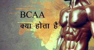 बीसीएए को आमतौर पर वर्कआउट के साथ लिया जाता है। हम आपको बताएंगे कि बीसीएए आखिर क्या है bcaa kya hota hai ताकि आप इसे लेने या नहीं लेने का फैसला ले पाएं।