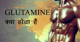 बॉडीबिल्डिंग के सबसे पॉपुलर सपलीमेंट में ग्लूटामाइन Glutamine की गिनती होती है। हम आपको बताएंगे कि ग्लूटामाइन क्या है Glutamine kya hota hai और किस काम आता है।